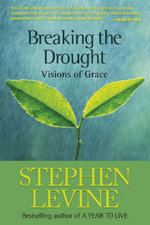 Breaking the Drought : Visions of Grace - Stephen Levine