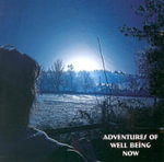 Adventures of Well Being Now - Nick Kemp