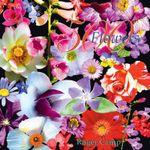 500 Flowers - Roger Camp