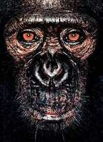 James and Other Apes : James & Other Apes - James Mollison