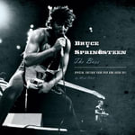 Bruce Springsteen : The Boss - Mick Wall