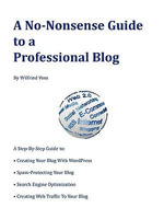 A No-Nonsense Guide to a Professional Blog - Wilfried Voss