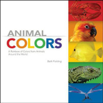 Animal Colors : A Rainbow of Colors from Animals Around the World - Beth Fielding