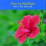 How to Meditate : Part One - Eric Harrison