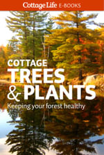 Cottage Trees & Plants : Keeping your forest healthy - Cottage Life