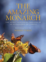The Amazing Monarch : The Secret Wintering Grounds of an Endangered Butterfly - Windle Turley