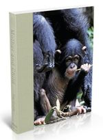 Mother and Child : Wildlife Photography - Reg Grundy