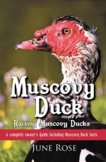 Muscovy Duck : Raising Muscovy Ducks - June Rose