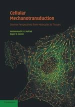 Cellular Mechanotransduction : Diverse Perspectives from Molecules to Tissues