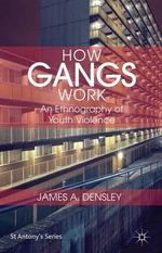 How Gangs Work : An Ethnography of Youth Violence - James Densley