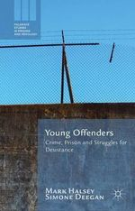 Young Offenders : Crime, Prison and Struggles for Desistance - Mark Halsey