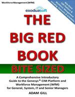 The Big Red Book - Bite Sized - Workforce Management - Adam Gill