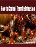 How to Control Termite Intrusion - Jack Moore