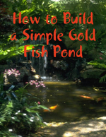 How to Build a Simple Gold Fish Pond - M Osterhoudt