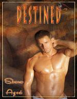 Destined - Shara Azod