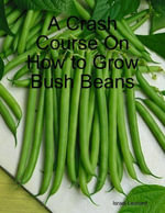 A Crash Course On How to Grow Bush Beans - Israel Leonard