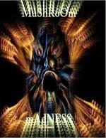 Mushroom Madness - Ed Russo