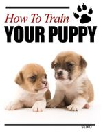 How to Train Your Puppy - SEIKO