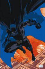 Absolute Batman Haunted Knight : Haunted Knight - Tim Sale