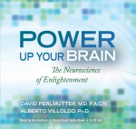 Power Up Your Brain : The Neuroscience of Enlightenment - David Perlmutter