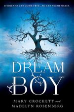 Dream Boy - Madelyn Rosenberg