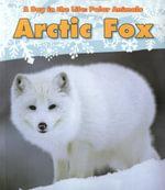 Arctic Fox - Katie Marsico