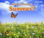 What Can You See in Summer? - Sian Smith