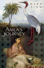 Anila's Journey - Mary Finn