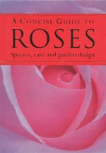 A Concise Guide to Roses : Species, Care and Garden Design - Sandra Lindner