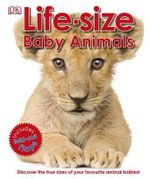 Life-Size Baby Animals - Dorling Kindersley