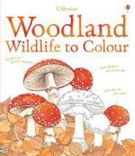 Woodland Wildlife to Colour : Includes Everything You Need to Draw Ariel, Cinder... - Susan Meredith