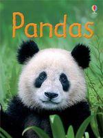Pandas : Beginners Series - James Maclaine