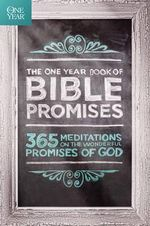 The One Year Book of Bible Promises : 365 Meditations on the Wonderful Promises of God - James Stuart Bell