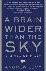 A Brain Wider Than the Sky : A Migraine Diary - Andrew Levy