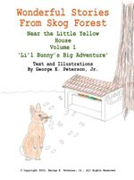 Wonderful Stories from Skog Forest : Near the Little Yellow House Volume 1 'Li'l Bunny's Big Adventure' - George E. Peterson Jr