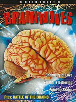 Steck-Vaughn Boldprint : Student Edition Grade 10 Brainwaves - Various