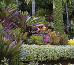Secret Gardens - Alain Le Toquin