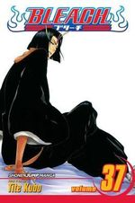 Bleach : Volume 37 : Beauty Is So Solitary - Tite Kubo