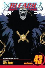 Bleach : Volume 43 : Kingdom of Hollows - Tite Kubo