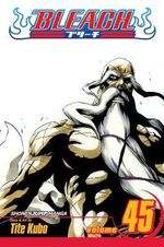 Bleach : Volume 45 : The Burnout Inferno - Tite Kubo