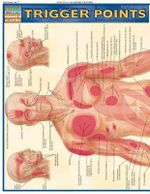 Trigger Points : Reference Guide - BarCharts, Inc.