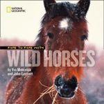 Face to Face with Wild Horses : Face to Face - Yva Momatiuk