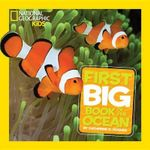 National Geographic Kids First Big Book of the Ocean : First Big Books - Catherine D Hughes