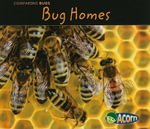 Bug Homes - Charlotte Guillain