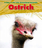 Ostrich : Day in the Life: Grassland Animals (Library) - Louise A Spilsbury