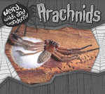 Arachnids - Julie Murphy