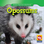 Opossums - Early Macken Joann