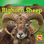 Bighorn Sheep - Early Macken Joann