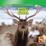 Elk - Early Macken Joann