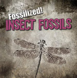 Insect Fossils : Fossilized! (Gareth Stevens) - Kathleen Connors